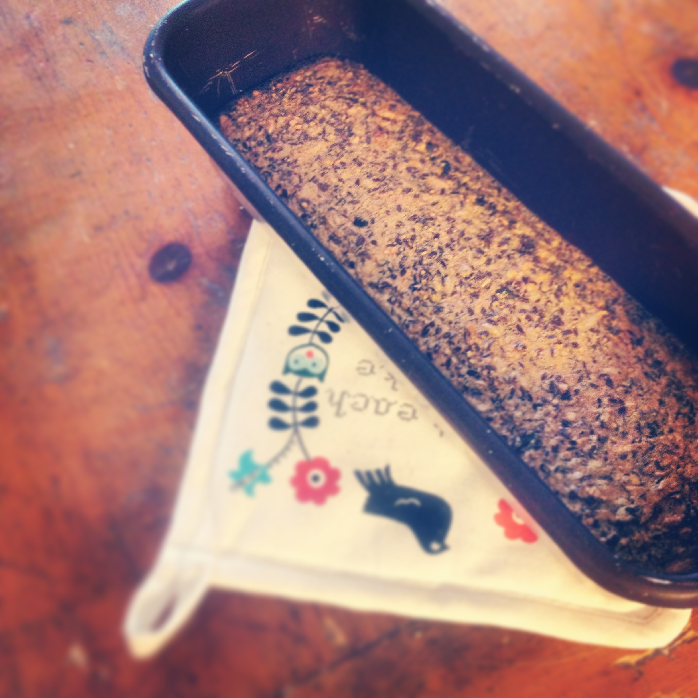 Recipe: Low carb protein bread | fructose friednly